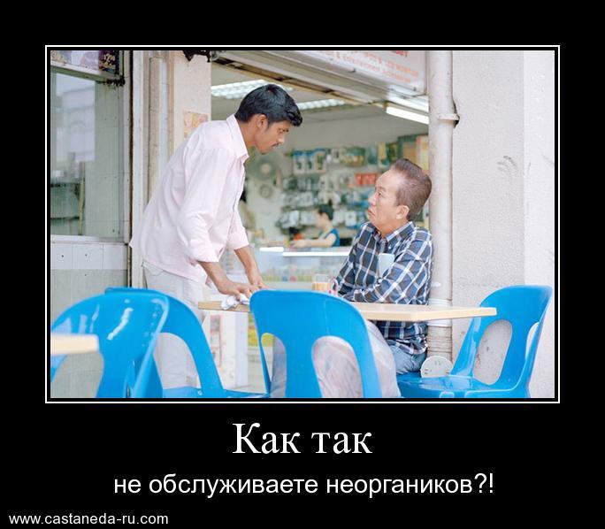 https://i5.imageban.ru/out/2021/07/17/0875693d27d591aee1faad92941dda99.jpg
