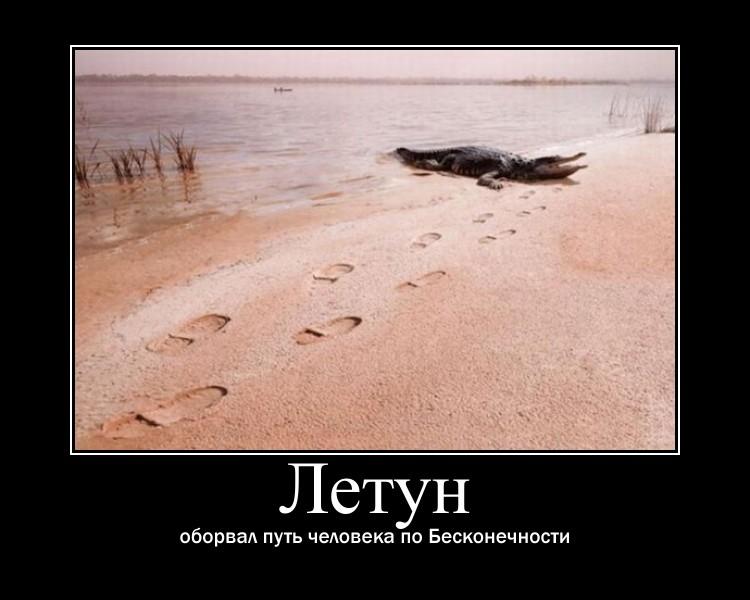 https://i5.imageban.ru/out/2021/07/17/0e997e560dd3360f3588c3bf24a34b67.jpg