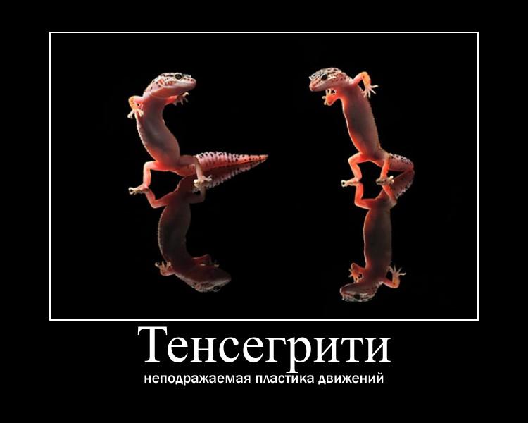 https://i5.imageban.ru/out/2021/07/17/118dd75cf893be6ca5513f507be2e039.jpg