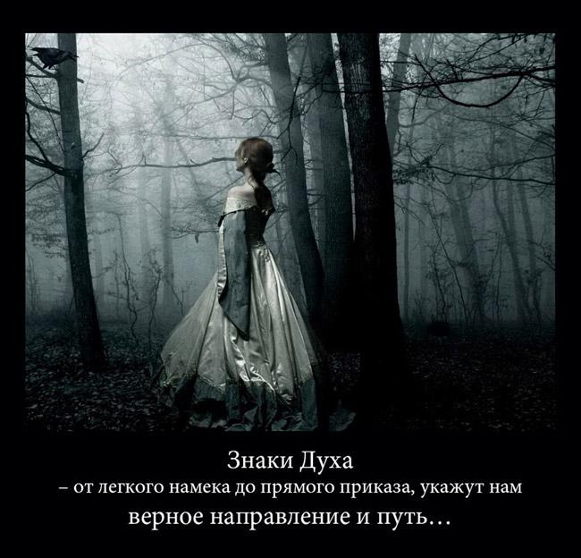 https://i5.imageban.ru/out/2021/07/17/1261faec4fdabfd6afaa1114496f3056.jpg