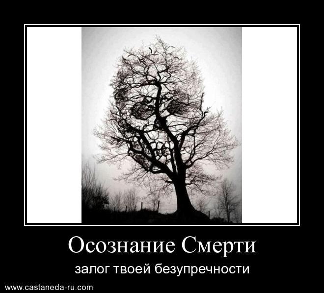 https://i5.imageban.ru/out/2021/07/17/1c4104d1484e0ea9ae984a9b5d95dfe5.jpg