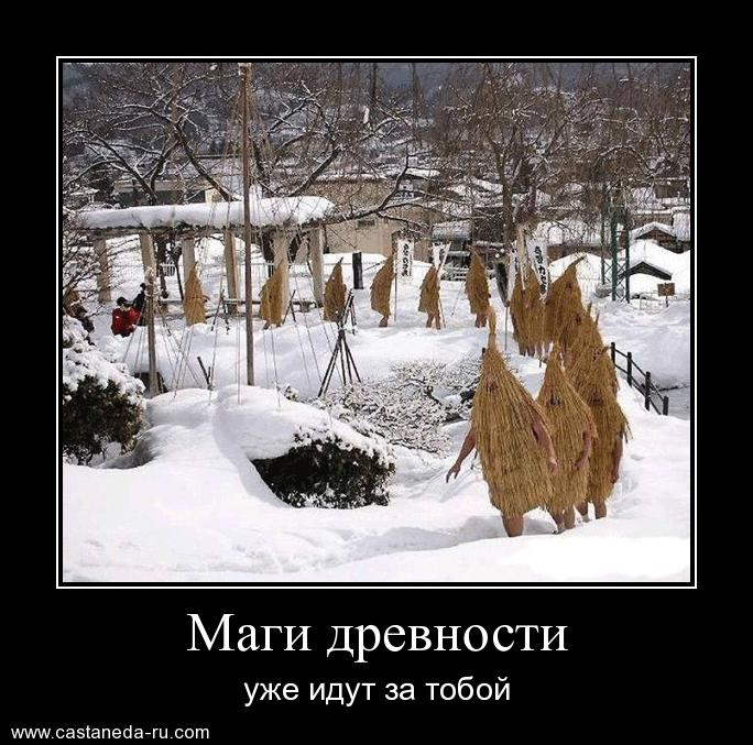 https://i5.imageban.ru/out/2021/07/17/1e28209ecad2f38bde34c60e6093b553.jpg