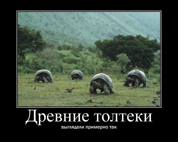 https://i5.imageban.ru/out/2021/07/17/218d118d13fddb707ceceb38152ddf84.jpg