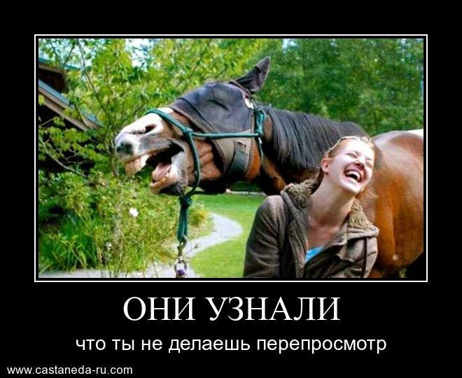 https://i5.imageban.ru/out/2021/07/17/30f4a93c7b05ef5d8f0e1b3259f578de.jpg
