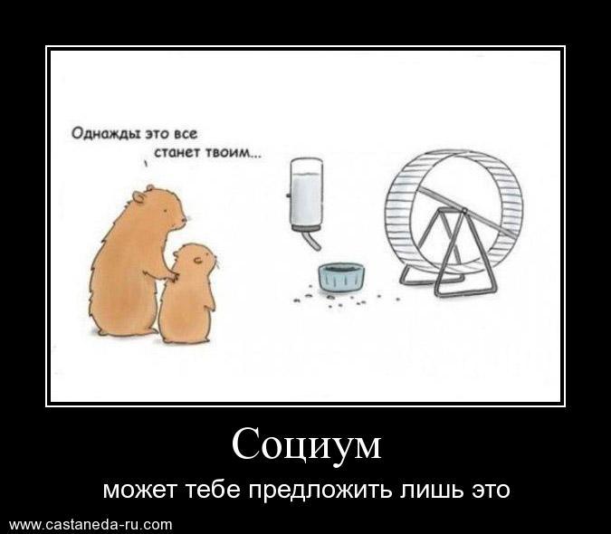 https://i5.imageban.ru/out/2021/07/17/3225b7c8f6a43d148dfe887f0f434c77.jpg