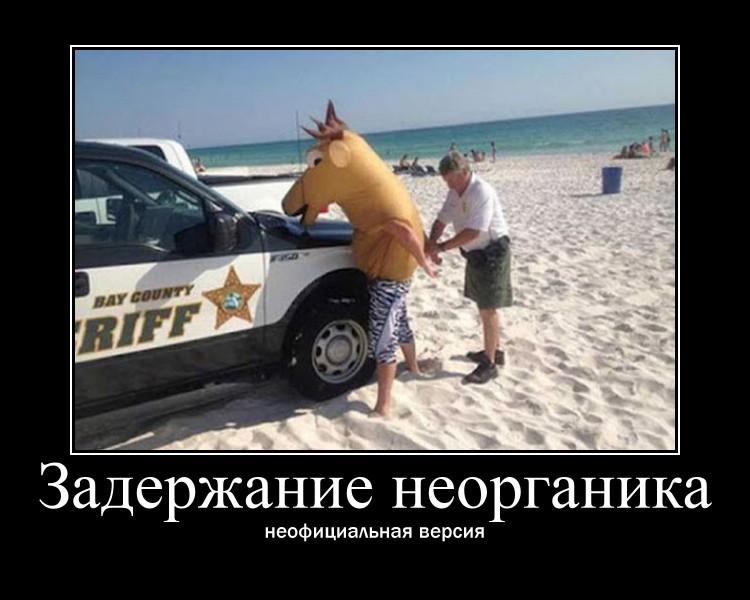 https://i5.imageban.ru/out/2021/07/17/339a1c9f90b7c8913361b1bc3849ebc1.jpg