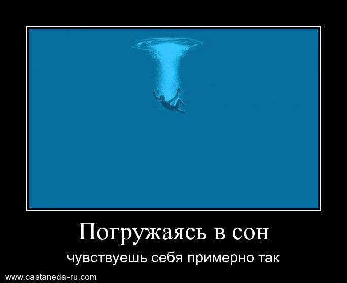 https://i5.imageban.ru/out/2021/07/17/341135b8473ac3ab570eb65e5b8460d2.jpg