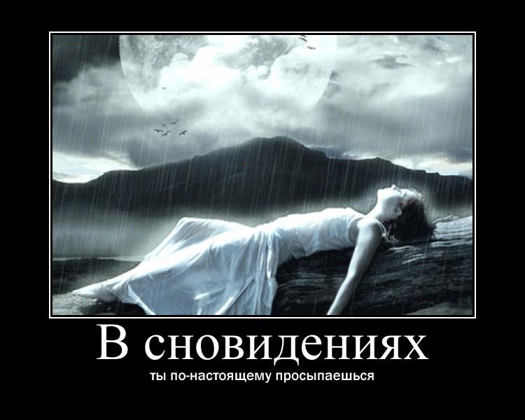 https://i5.imageban.ru/out/2021/07/17/35fc4c96ea98ccffc8f9e6bb62a73dd1.jpg