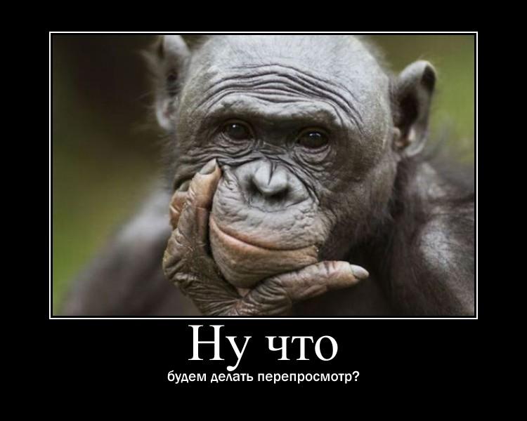 https://i5.imageban.ru/out/2021/07/17/37e0e46910225a2b7f6c447c43bab66c.jpg