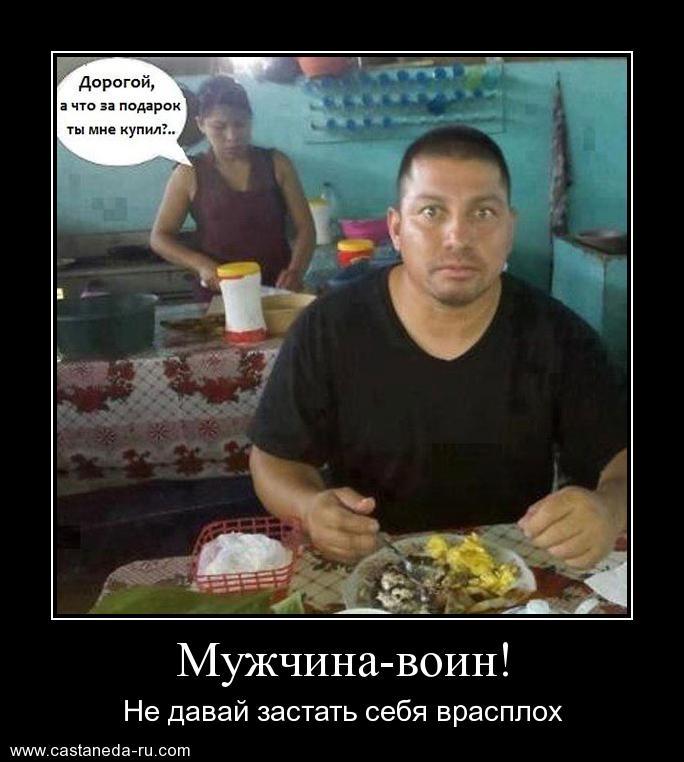 https://i5.imageban.ru/out/2021/07/17/43c78568b94b7e05a71e053ffdd14c4f.jpg