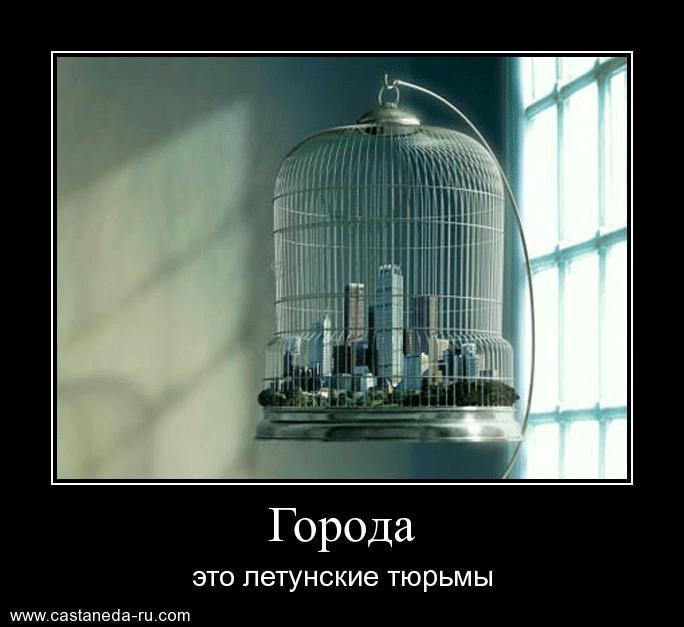 https://i5.imageban.ru/out/2021/07/17/47421e25f219dd3d6d489d4219f1da2a.jpg