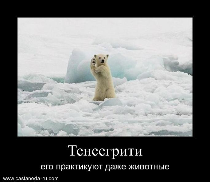 https://i5.imageban.ru/out/2021/07/17/48323c2432f97636c976f4325393254d.jpg