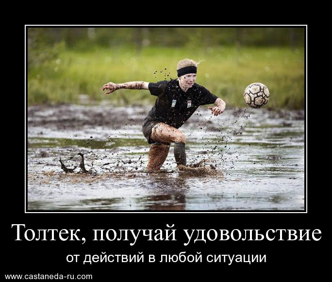https://i5.imageban.ru/out/2021/07/17/50ad48f2112eb169c349e7a962e4b80d.jpg