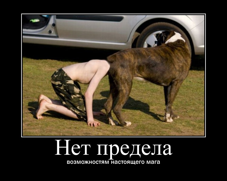 https://i5.imageban.ru/out/2021/07/17/57209fe1b9041ec09684a6c00bc52900.jpg