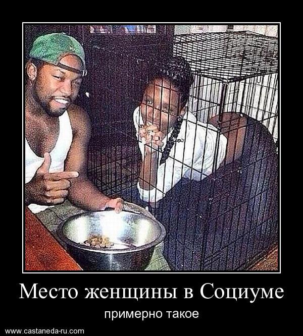 https://i5.imageban.ru/out/2021/07/17/57511ccd16f611da386ea98ee5f6f404.jpg