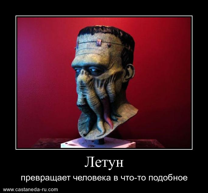 https://i5.imageban.ru/out/2021/07/17/5b5f68d37b67388ff8eb5f5f2221336d.jpg
