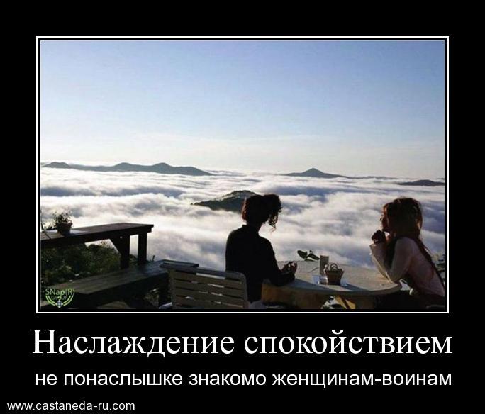 https://i5.imageban.ru/out/2021/07/17/5fdf868e9468fbaf4cab41704678166c.jpg