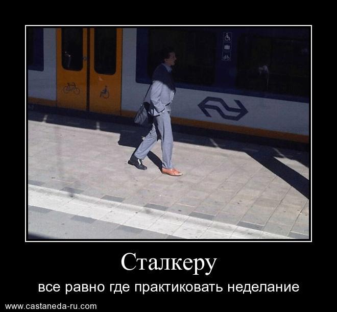https://i5.imageban.ru/out/2021/07/17/6518a506ff8c543850a48d45f8c37408.jpg