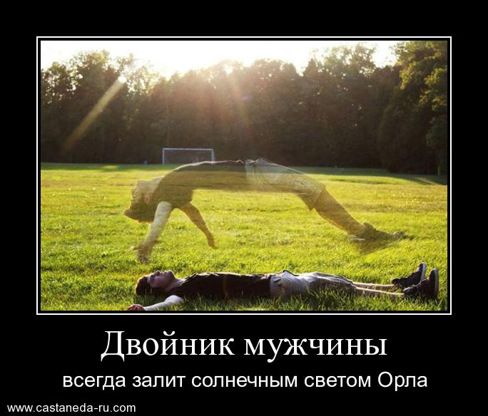 https://i5.imageban.ru/out/2021/07/17/75bae921d789c7596fa0e12e961072b8.jpg