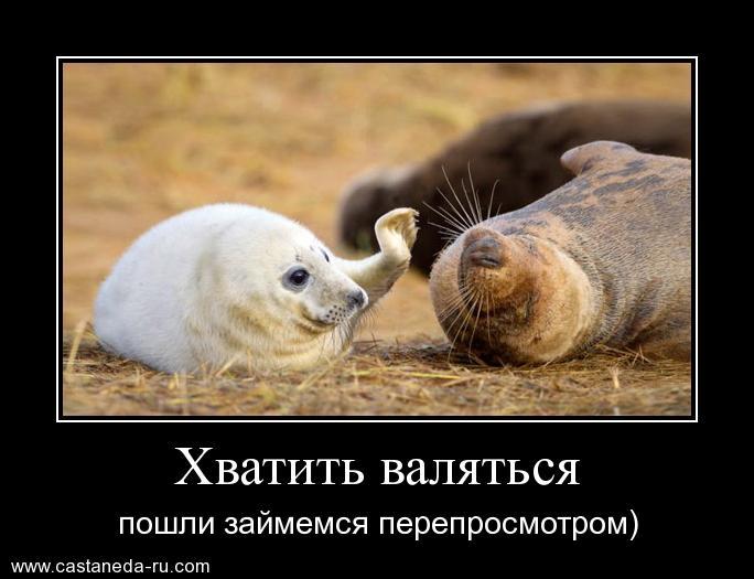 https://i5.imageban.ru/out/2021/07/17/78783a15b36a18886ee07fff803cd30d.jpg