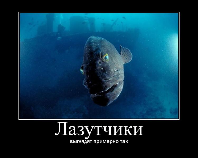 https://i5.imageban.ru/out/2021/07/17/7ce8b25523df0f0da1ba4fed2bc3eaa8.jpg