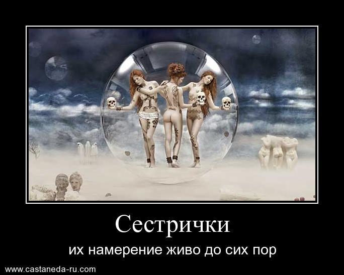 https://i5.imageban.ru/out/2021/07/17/8f16493bc839639ded6cde758bec7b4f.jpg