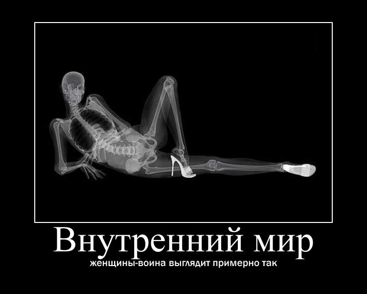 https://i5.imageban.ru/out/2021/07/17/916555c2337b1938ed63c26a9d89a19a.jpg