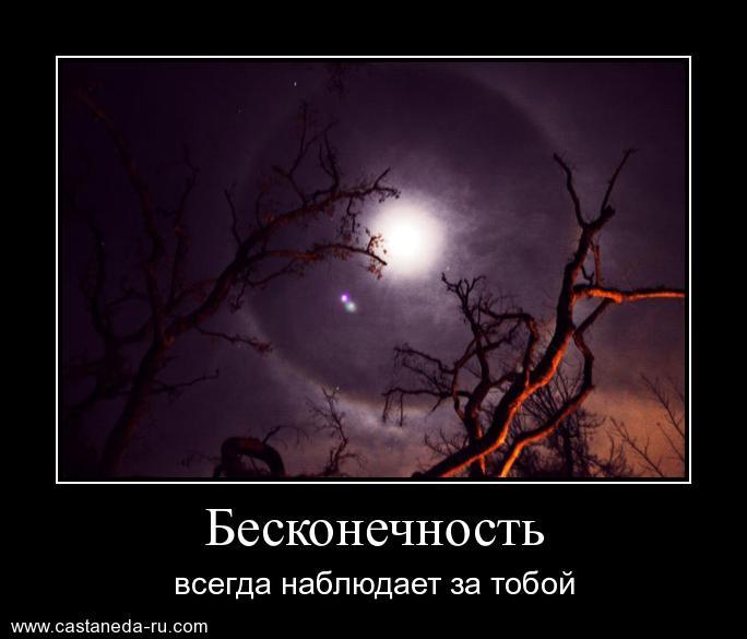 https://i5.imageban.ru/out/2021/07/17/95a7e74dd43f8918df2478f5264f05ce.jpg