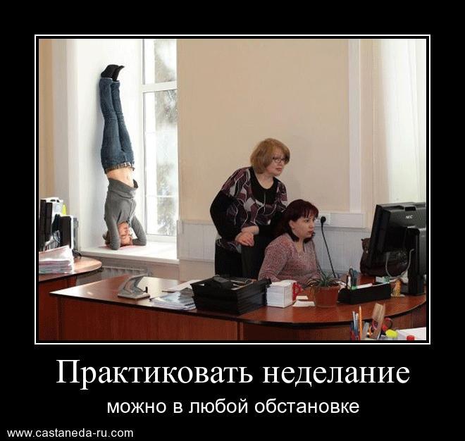 https://i5.imageban.ru/out/2021/07/17/98cf0fe3c22775fa9a1f704b93f78776.jpg