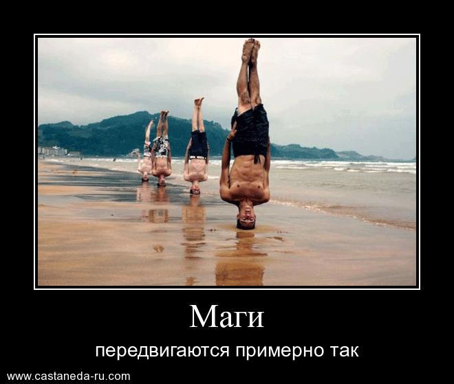 https://i5.imageban.ru/out/2021/07/17/9c78410dd648b51a69e9c990574a08dc.jpg