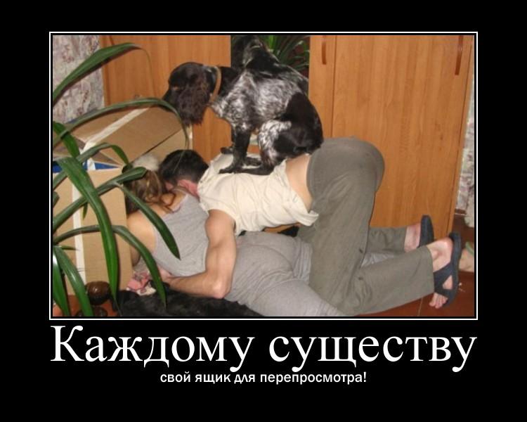 https://i5.imageban.ru/out/2021/07/17/b610230a3b51d73b41d12be7b8172591.jpg
