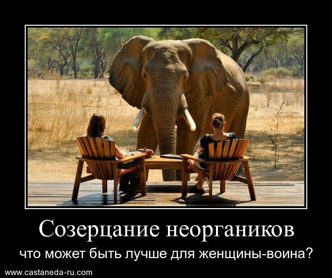 https://i5.imageban.ru/out/2021/07/17/b6bb712391c38e756fc5b368777b6ee0.jpg