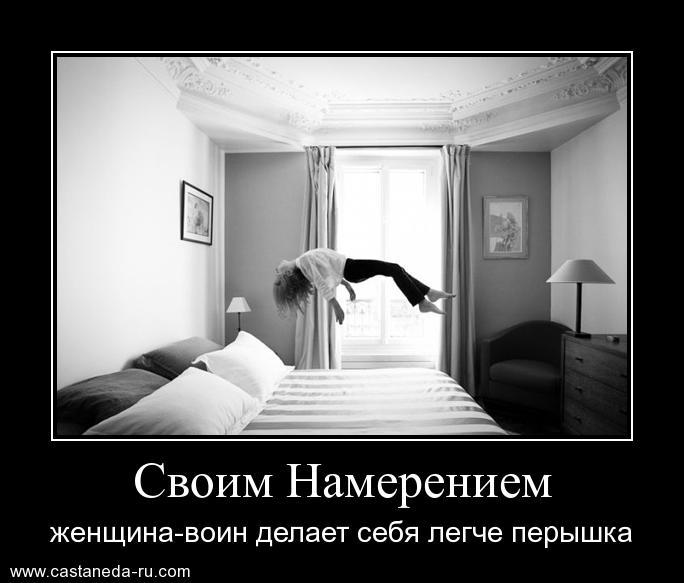 https://i5.imageban.ru/out/2021/07/17/ba9590ab524b7b4e2f065f14322e88f4.jpg