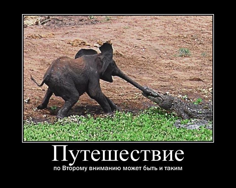 https://i5.imageban.ru/out/2021/07/17/bfa5d680baa2e0209d2faeb1cd5b452e.jpg