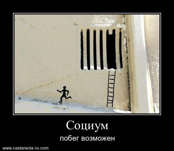 https://i5.imageban.ru/out/2021/07/17/c1a30fcdf558c24c77284006858fb7df.jpg