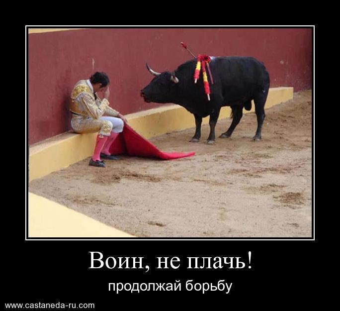 https://i5.imageban.ru/out/2021/07/17/c651b4d29e5c066b49494c6822e5917a.jpg