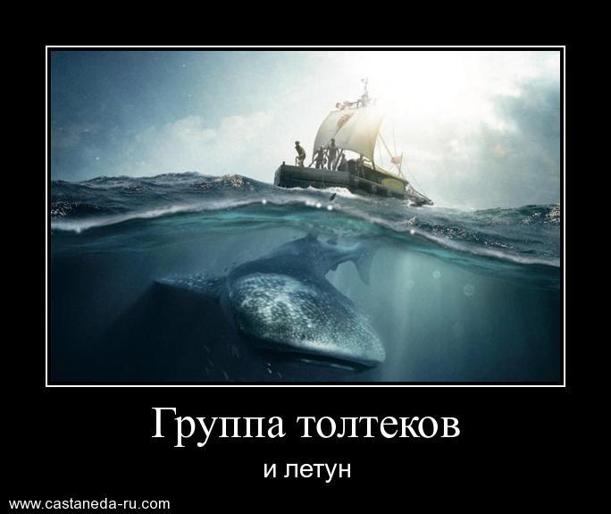 https://i5.imageban.ru/out/2021/07/17/ccc51574f740203aad207d42530ef3bb.jpg