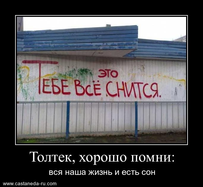 https://i5.imageban.ru/out/2021/07/17/d1f12ba64719b50776f166dc1ea3fbdf.jpg