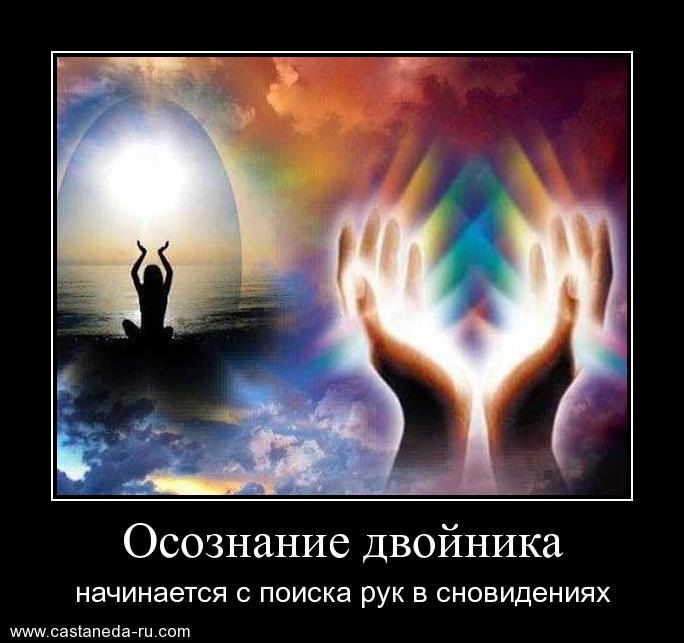 https://i5.imageban.ru/out/2021/07/17/d5c29b007301c679433ec3edb7201f4f.jpg