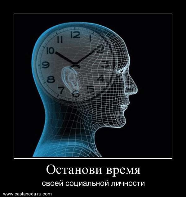 https://i5.imageban.ru/out/2021/07/17/d6a530c55e4f2c7f8a84f53b238b0421.jpg