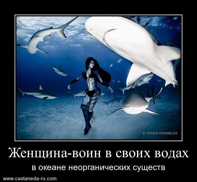 https://i5.imageban.ru/out/2021/07/17/dac01ddf8126979dc26c111107b235b2.jpg