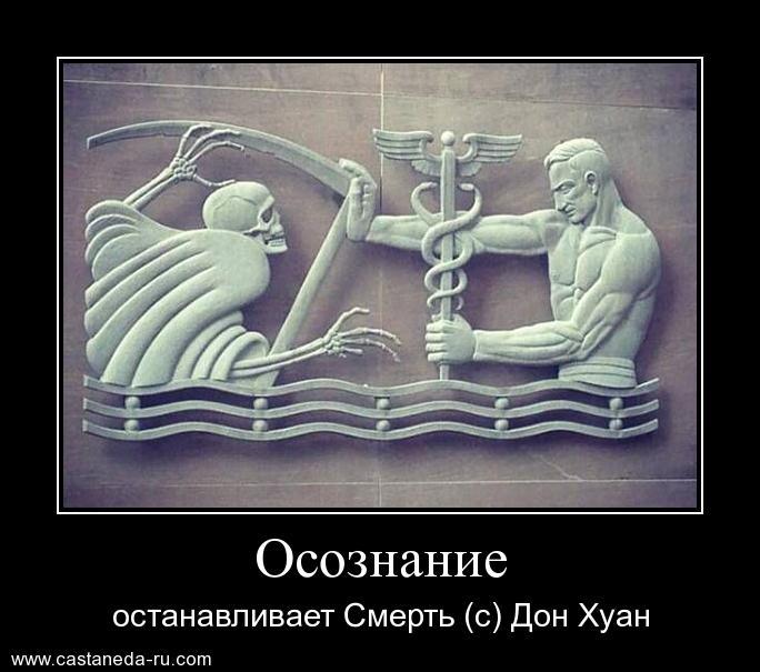 https://i5.imageban.ru/out/2021/07/17/eadb7f2f1f859de8a8fee029090d36e5.jpg
