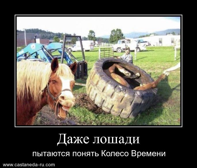 https://i5.imageban.ru/out/2021/07/17/ed6cdab40e3aafa5085c511ba9001492.jpg