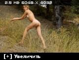 http://i5.imageban.ru/thumbs/2013.08.25/bbb9ace6769843c5ba832794b3801020.jpg