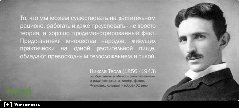 http://i5.imageban.ru/thumbs/2013.10.10/71e1f29b0487d8dc808d6d757a29608e.jpg