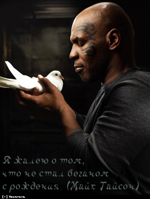 http://i5.imageban.ru/thumbs/2013.10.11/923f0f5525434f9c277ea90ae2d476c2.jpg