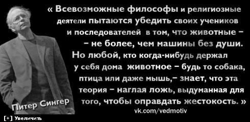 https://i5.imageban.ru/thumbs/2013.10.11/d9d4b340a33b606666ea04bee3eb5aa1.jpg