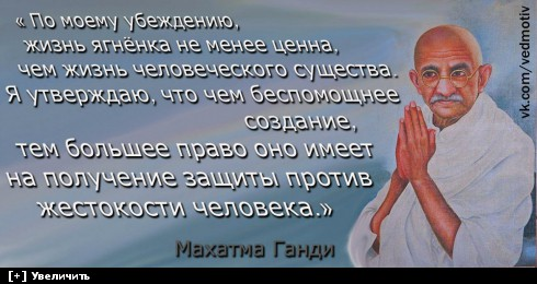 http://i5.imageban.ru/thumbs/2013.10.20/dba94da14b303afae3c235db70441d8e.jpg