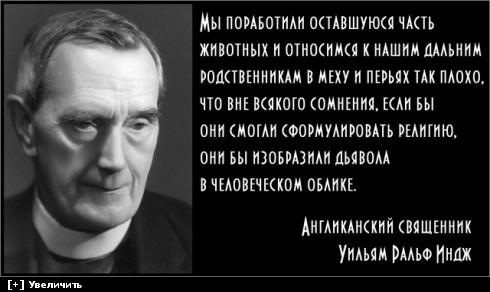 http://i5.imageban.ru/thumbs/2013.11.22/f2258b23c248302f73a219bee92b6f9c.jpg