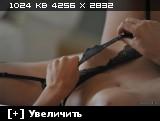 http://i5.imageban.ru/thumbs/2013.11.24/100a0ace8b900fe2844d9a85a9c2e306.jpg